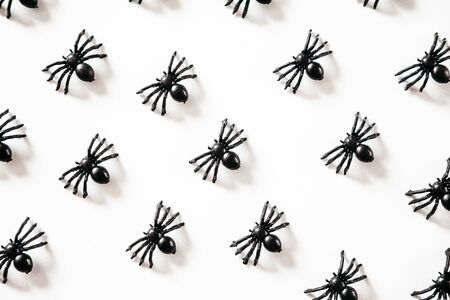 Black spiders on a white background. Halloween celebration background.