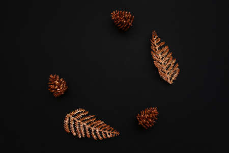 Cones and branches on a black background. Christmas minimal background. Reklamní fotografie