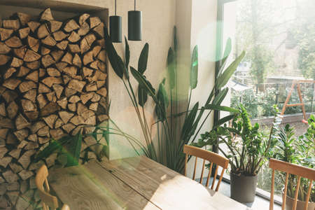 Rustic interior. Houseplants next to the window and firewood. Wooden table. Standard-Bild