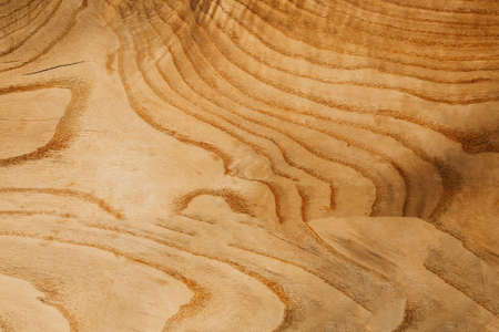Abstract wooden surface background or surface. Copy space.