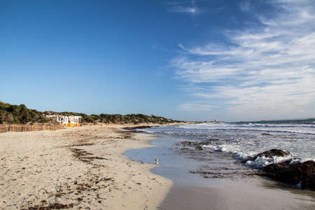 Salinas Beach in Spring