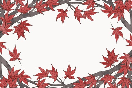 japanese maple: Hand drawn autumn frame template with red Japanese maple leaves and branches