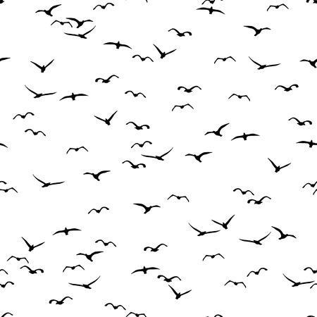 Seamless d'une volée d'oiseaux