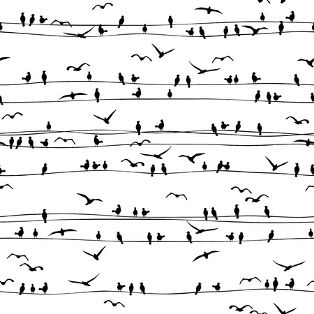 wires: Seamless pattern of birds sitting on electrical wires