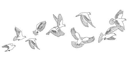 Banner with hand drawn white pigeons or doves