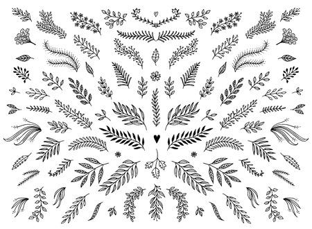 손으로 꽃 장식 요소, 꽃 및 텍스트 장식을위한 나뭇잎 스케치.