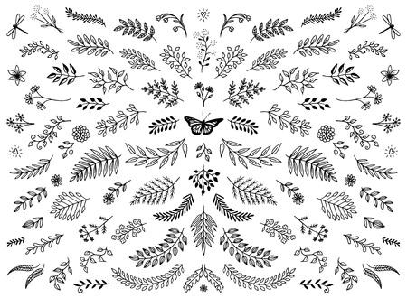 Handschetsvormige bloemenontwerpelementen, bloemen en bladeren voor tekstdecoratie.