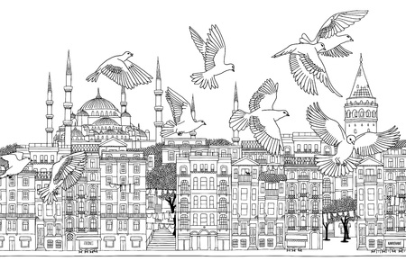 Birds over Istanbul - hand drawn black and white illustration of the city with a flock of pigeons