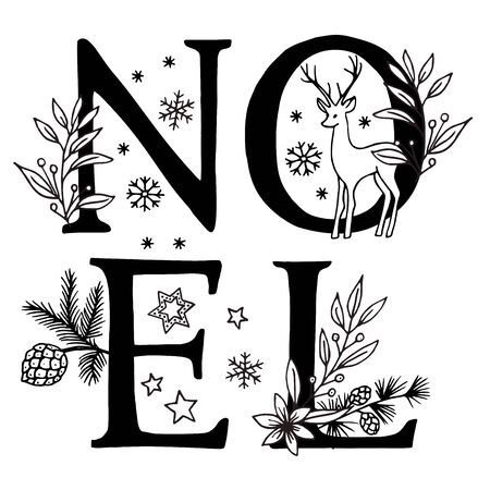 Noel, Christmas: Hand drawn letters decorated with floral elements and snowflakes
