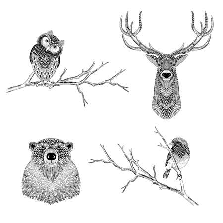 Artistic black and white illustration of wild forest animals - owl, deer, bear, bird