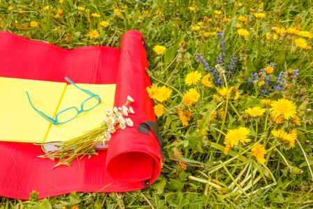 a flowered garden of yellow and blue wild flowers dandelion 版權商用圖片