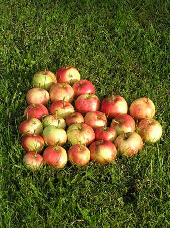 pome: Apple Heart