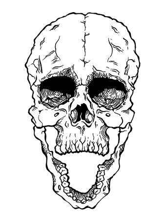 samhain: Terrible frightening skull. Creepy illlustration for halloween