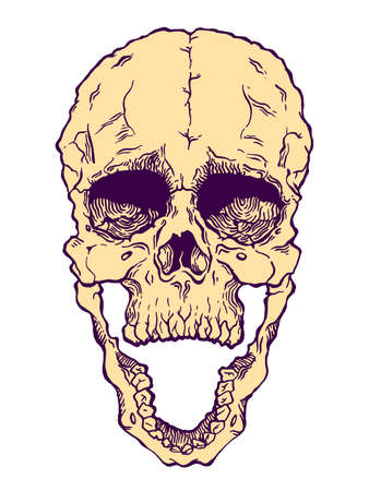 Terrible frightening skull. Creepy illlustration for halloween