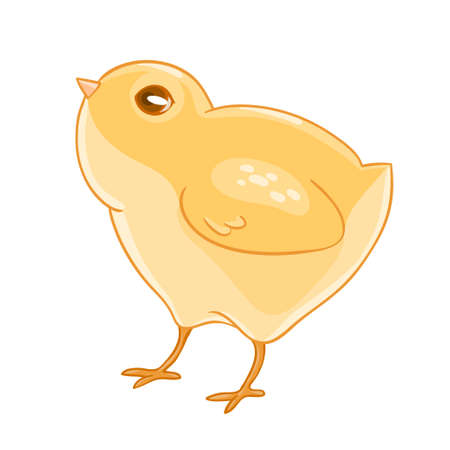 Cute cartoon yellow chicken.