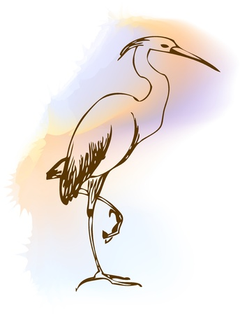 illustration heron Vector