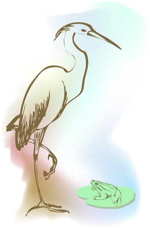 cormorant: Vector illustration heron Illustration