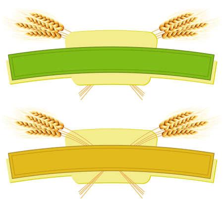 Package desing. Wheat flour or Pasta, macaroni, spaghetti.