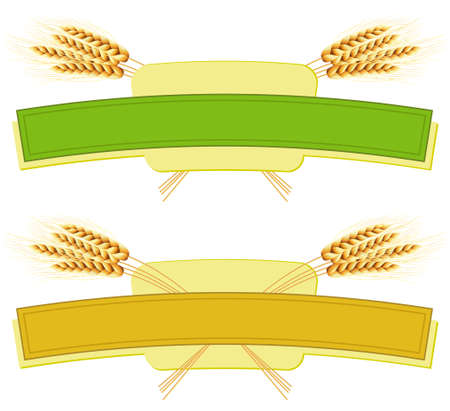 ribbon pasta: Package desing. Wheat flour or Pasta, macaroni, spaghetti.