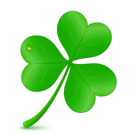 three leaves: Vector illustration of clover. St. Patricks day symbol Illustration