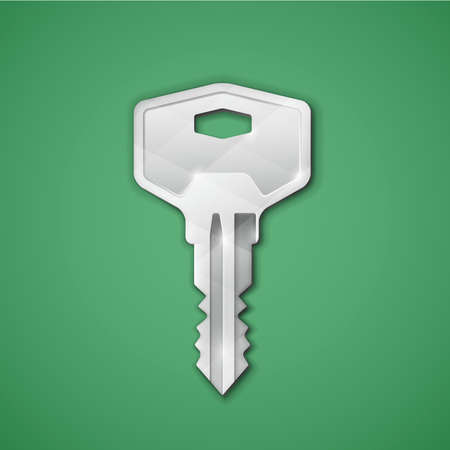 key signature: Highly detailed key icon