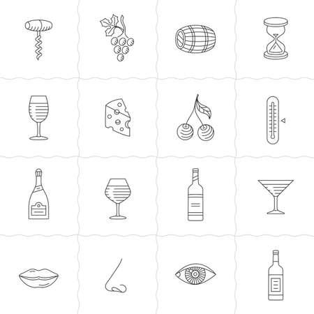 sommelier: Iconos Set de vino - adquisici�n, el almacenamiento, la rotaci�n bodega y degustaci�n Vectores