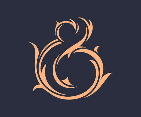 orthographic symbol: Wedding stylish custom ampersand. Vector illustration