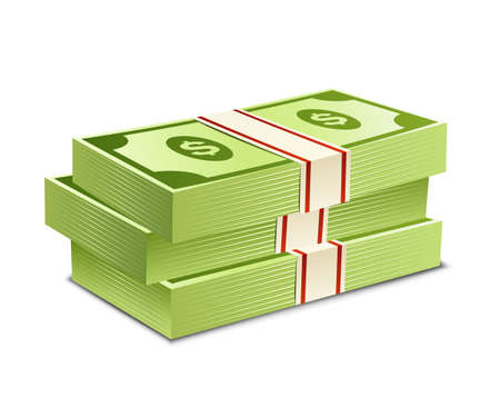bank notes: Pack of bank notes. Vector illustration. Packs of dollars money
