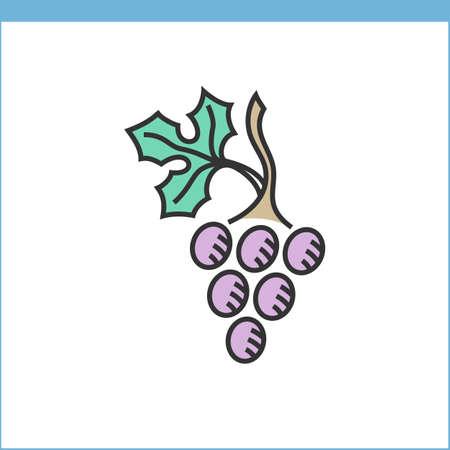 wine grape: Wine grape icon. Linear style Illustration