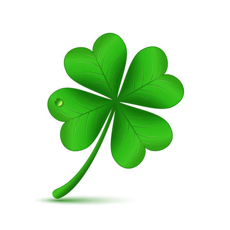 leafed: Four leaf green clover, St Patricks day icon and good luck symbol. Vector illustration of clover Illustration