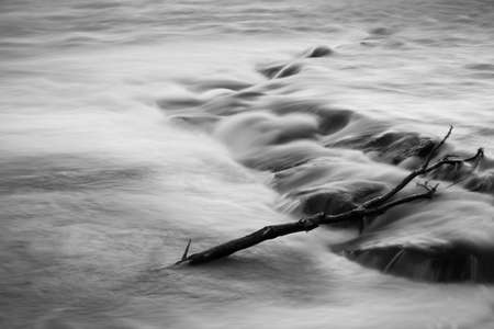 river trunk: Lonely trunk in the river