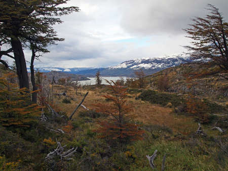 View of the Lago Grey, Torres del Paine in Fall, Chile. Stock Photo