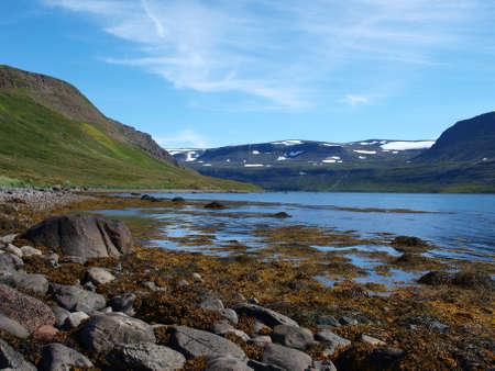 A reserva natural Hornstrandir est� situado na pen�nsula northenmost da Isl�ndia.