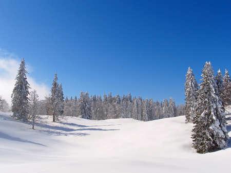 Abeto, Jura montanha no inverno, mont d ou �rea Banco de Imagens