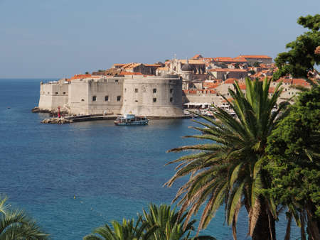 Dubrovnik medieval city harbor entrance with palm trees in the foreground photo