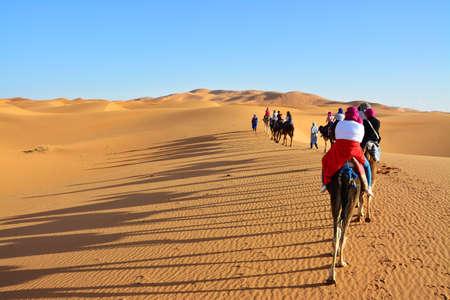 desert, the Western Sahara, Morocco, camel, people Reklamní fotografie