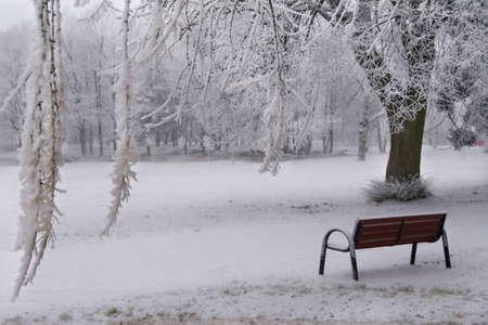 park bench in the winter Stockfoto - 134894778