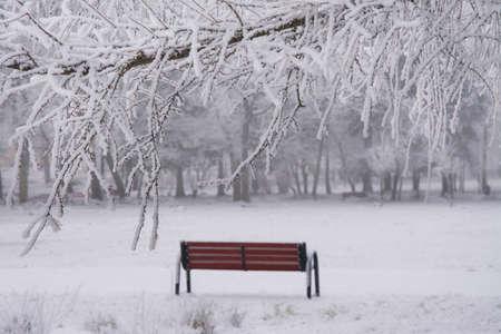park bench in the winter Stockfoto