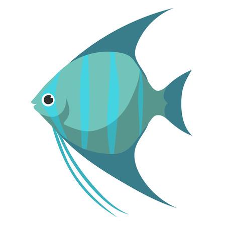 scalar: fish scalar flat