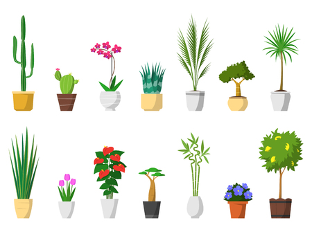 Big set of decorative house plants with pot isolated. interior, vector, flat icon design. Ilustração