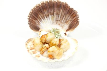 gastronome: scallop Stock Photo