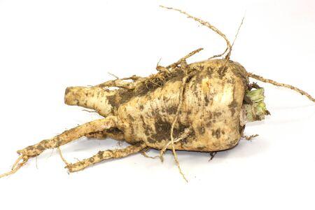 parsnip Stock Photo