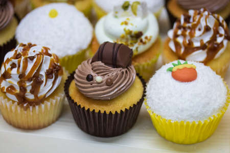 chocolate cupcake, coconut, pistachio and other flavors Stock Photo