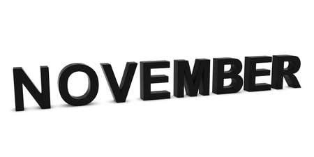 month 3d: NOVEMBER Black 3D Month Text Isolated on White