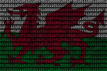 welsh flag: Welsh concetto di tecnologia - Bandiera del Galles in codice binario - illustrazione 3D