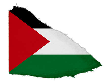 palestine: Flag of Palestine Torn Paper Scrap Isolated on White Background