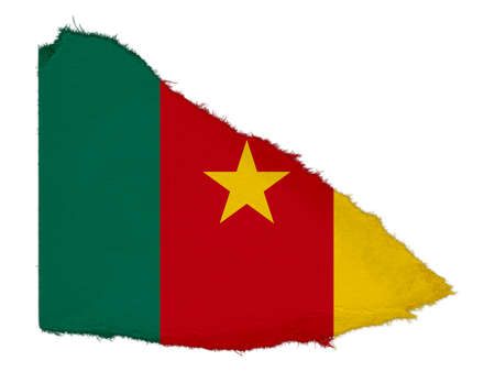 cameroon: Flag of Cameroon Torn Paper Scrap Isolated on White Background
