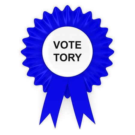 voters: Vote Tory Blue Rosette 3D Illustration