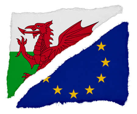 welsh flag: Welsh and EU Flag Torn Paper Scraps Isolated on White Background