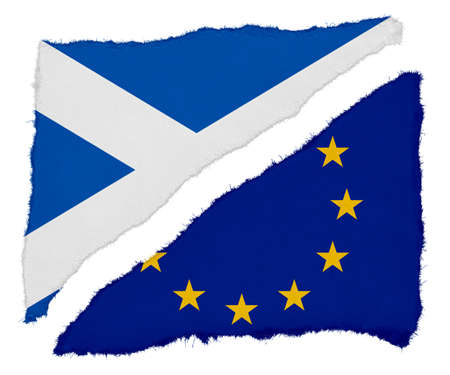 eu flag: Scottish and EU Flag Torn Paper Scraps Isolated on White Background Stock Photo